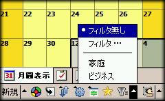 PI55_Cau.jpg