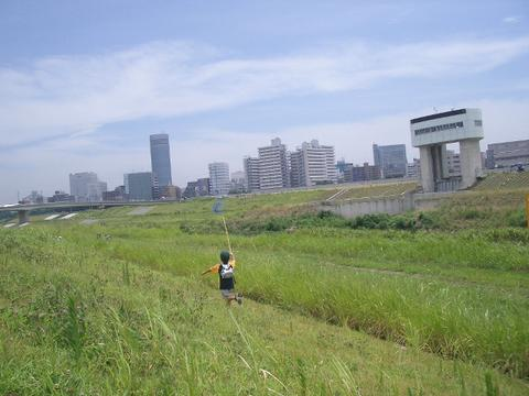 mushitori.jpg
